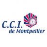 image logo_CCI_MPL.png (5.0kB)